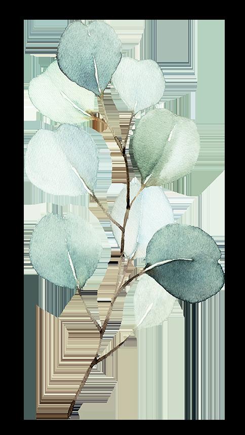 A Eusebi leaf